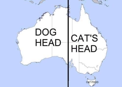 dogheadcathead